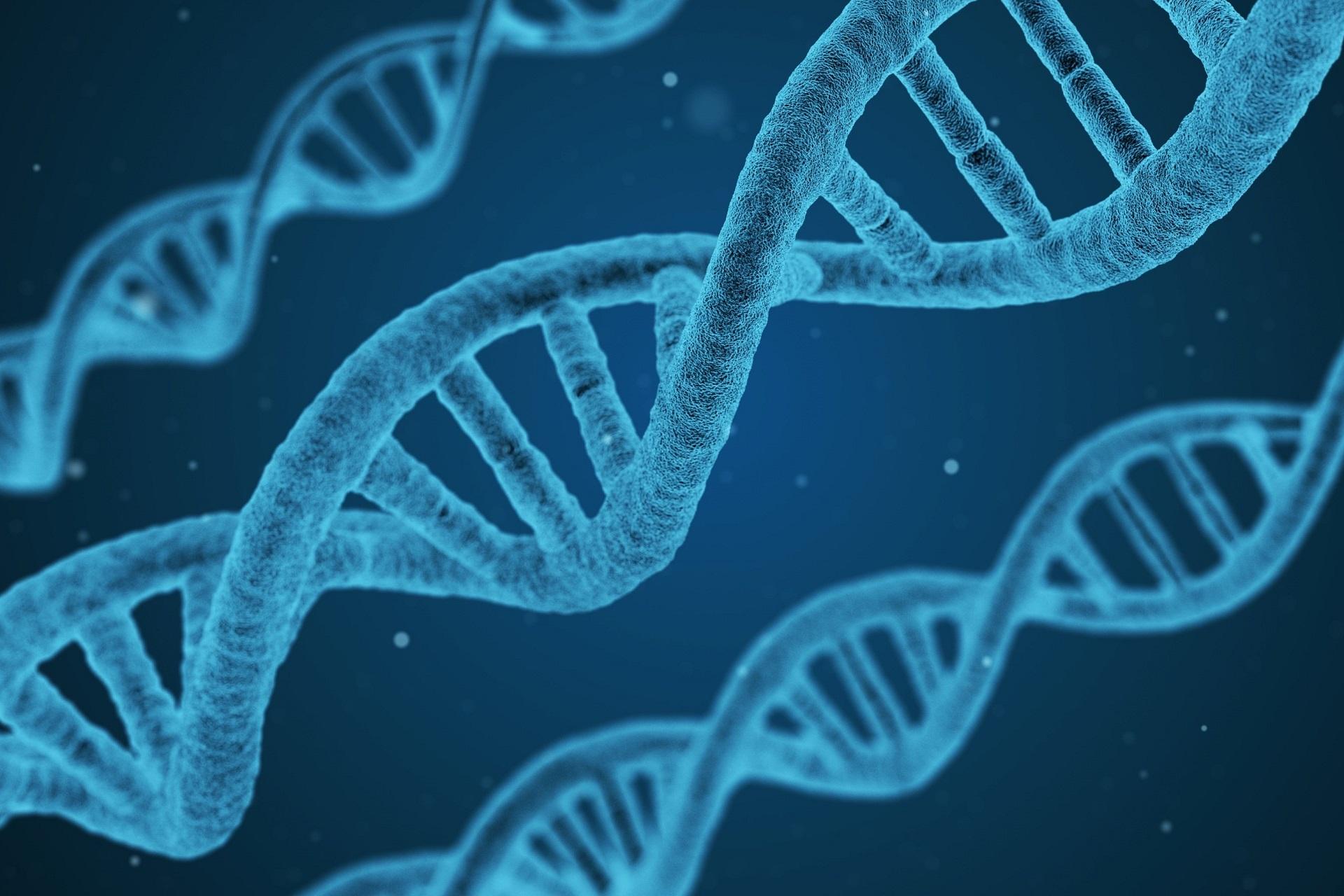 Können sich Gene verändern?
